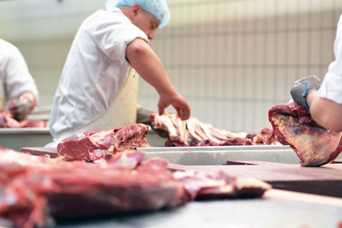 7 cursos imprescindibles sobre seguridad alimentaria