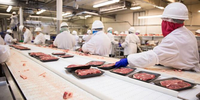 Inocuidad alimentaria (IFS/BRC) y sostenibilidad del Sector Alimentario